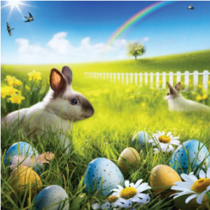 80x125cm Easter Rabbit Egg Photo Background Spring Break Happy Time Collection Helper Home Wall Art discountshub