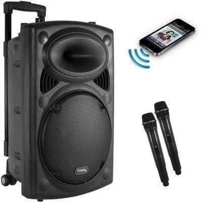 Rechargeable Bluetooth PA System With Wireless Microphone Radio & SD/USB - 8 Inches discountshub