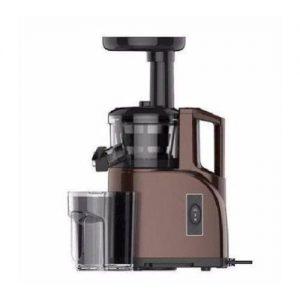 Syinix Multifunctional Whole Slow Juicer discountshub