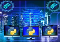 Python Learn by Python Projects & Python Quizzes in 2021 discountshub